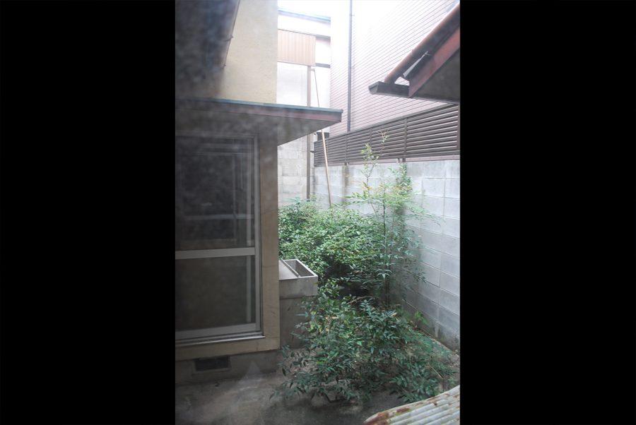 庭園ビフォー
