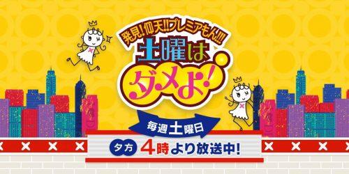 読売テレビの情報番組「土曜はダメよ!」の人気コーナー・小枝不動産にて、弊社の「遊べる家」が取り上げられました。