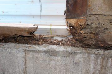 3.全部解体すると、土台や柱などもチェックできるようになり傷んでいるところを修復することができます。